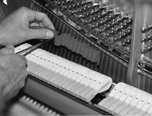 Pitch, Temperament and Tuning of the Piano